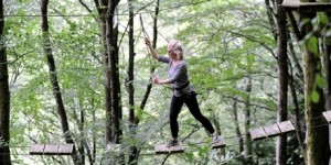 Tree surfers junior high ropes course fun for all the family in Devon