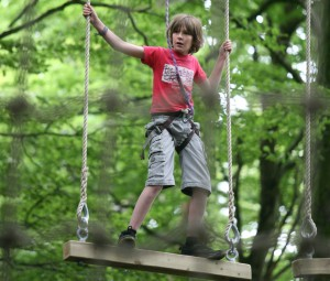 Kids go wild in the trees at Tree Surfers