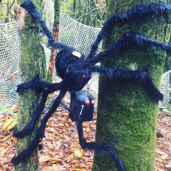 Halloween Trail 2021